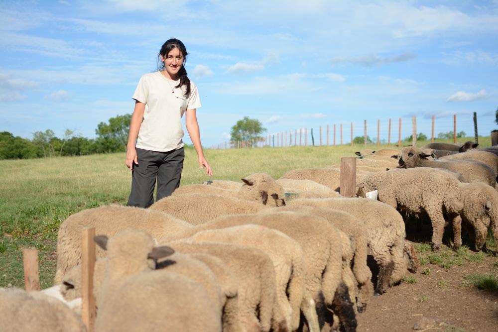 Cabaña La Armonía apuesta a vender cortes ovinos congelados y platos gourmet de cordero en su restaurante o por Internet