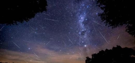 Lluvia de estrellas captada en el cielo misionero