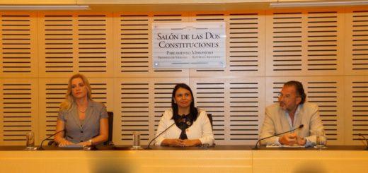 Presentaron el Digesto Jurídico de Género de Misiones
