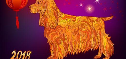 El clásico másbuscado para fin de año: el Horóscopo Chino de Ludovica Squirru, ingresá a la nota y mirá como te irá en el año del perro