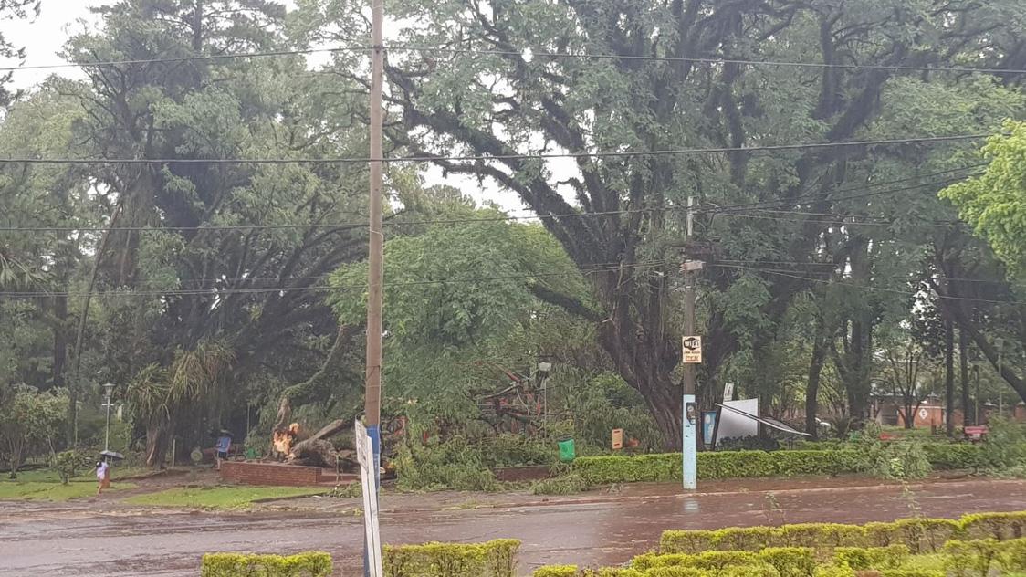 Montecarlo: fuerte temporal con vientos huracanados afectó numerosas viviendas