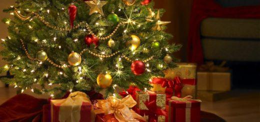¿Por qué se arma el árbolito de Navidad todos los 8 de diciembre?