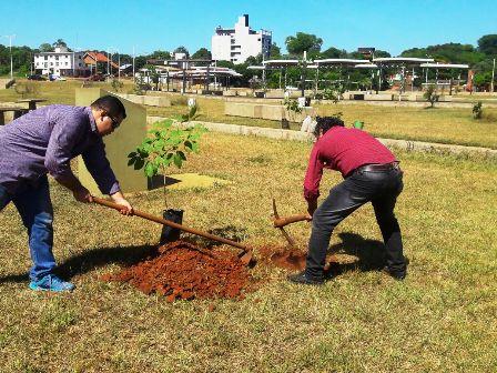 El municipio revalorizó el Arboreto de la Memoria en la ex casita del Rowing
