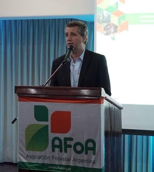 El gobierno nacional reafirmó como una actividad estratégica para el país a la foresto-industria