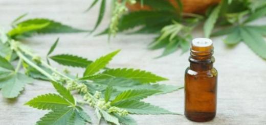 Santa Fe se acerca a la producción de aceite de cannabis para uso medicinal