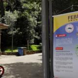 Fiebre amarilla: guía y consejos para argentinos que viajen a Brasil