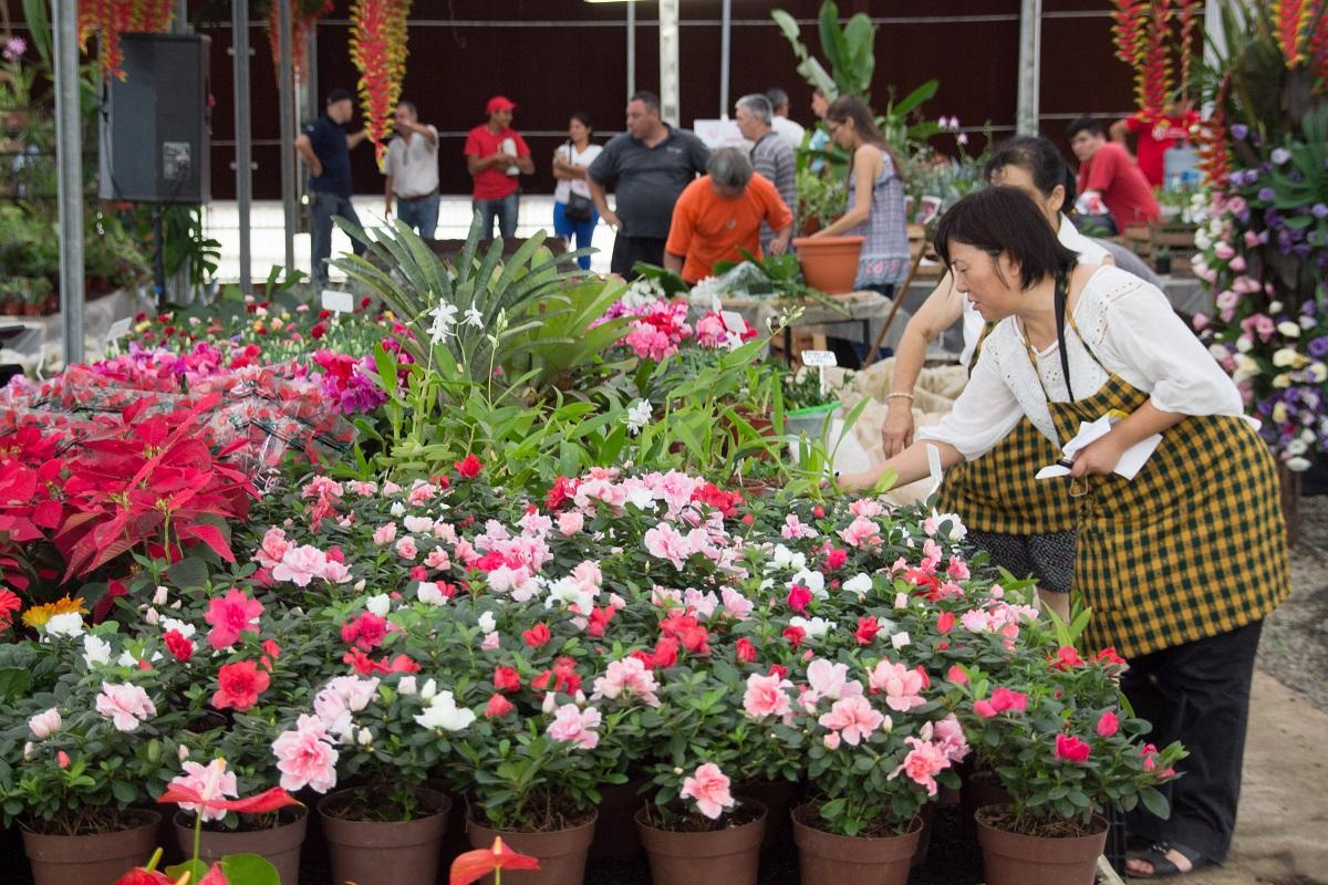 Misiones en Flor festeja el Día de los Enamorados