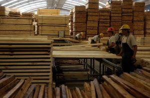 La visión de empresarios de la cadena foresto-industrial para 2018