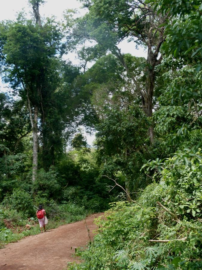 La sostenibilidad como filosofía empresaria, el sello de los emprendimientos turísticos de Patricia Durán Vaca
