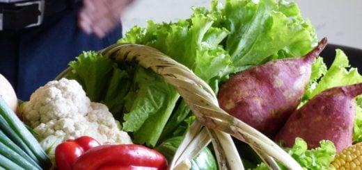 Autoridades del Mercado Concentrador de Posadas presentaron Canastas Solidarias de frutas y verduras desde 180 pesos
