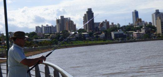 Pescan Boga, Armado, Piraña, Bagre y hasta Dorados en la costanera de Posadas