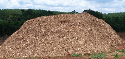 Corrientes otorgó la viabilidad ambiental al proyecto de planta de generación energía con biomasa forestal de Santo Tomé