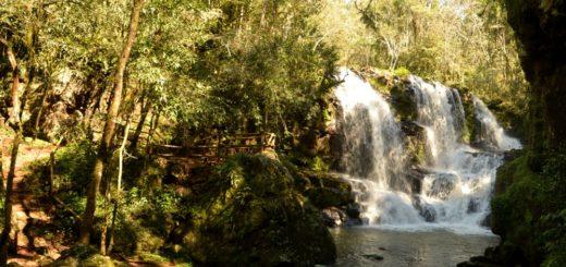 Las imágenes que te invitan a conocer la selva misionera y vivir el destino naturaleza preferido del país
