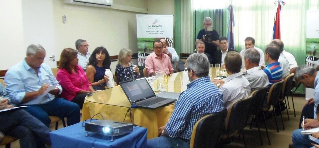 La Mesa Forestal de Misiones define propuestas para la prórroga de la Ley 25.080