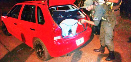 Incautan 77 kilos de marihuana ocultos en los paragolpes, paneles de puertas y respaldos de los asientos de un automóvil interceptado en Apóstoles