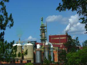 Investigadora del Conicet considera desatinado declarar por Ley la insalubridad en toda la industria de celulosa, papel y cartón