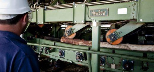 Anunciaron que construirán un taller de afilado para la industria de la madera en Virasoro, con apoyo de Nación