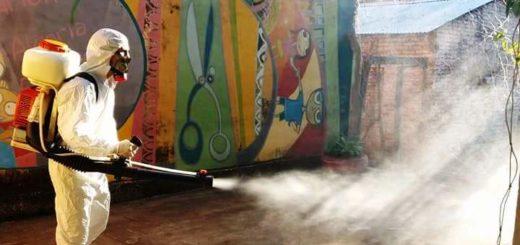 Más de 100 escuelas fueron fumigadas en Posadas en la antesala del inicio del ciclo lectivo 2018