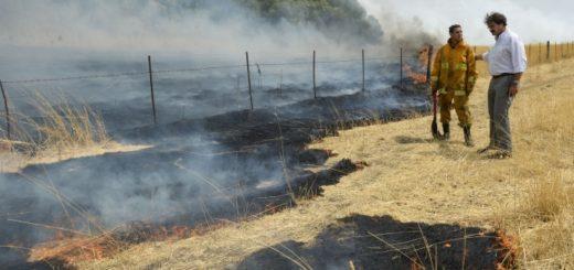 Devastador incendio en la provincia de Buenos Aires afectó más de 20 mil hectáreas en Tornquist y crece la preocupación