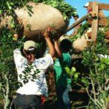 El INYM reiteró su compromiso en la lucha contra el trabajo infantil en la actividad yerbatera