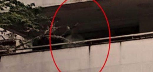 Viral: divulgaron la imagen del supuesto fantasma de Pablo Escobar