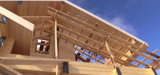 La construcción sostenible con madera, el nuevo desafío habitacional en el país en manos de la foresto-industria