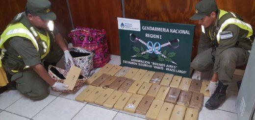 Interceptan encomiendas con marihuana que habían sido despachadas desde Puerto Iguazú