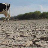La NASA alertó sobre los cambios masivos en la disponibilidad del agua en la Tierra