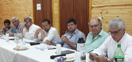 Industria analiza propuestas del sector maderero junto a funcionarios del Ministerio de Producción de Nación