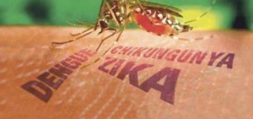 Paraguay continúa su lucha contra el dengue y declaró contingencia ambiental