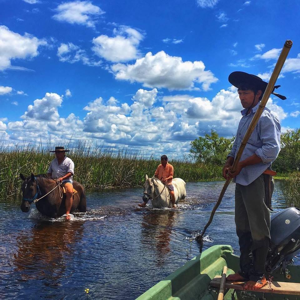 Con el Parque Nacional Iberá, el humedal más grande del país, Misiones se destaca en el centro de un corredor natural único en el mundo