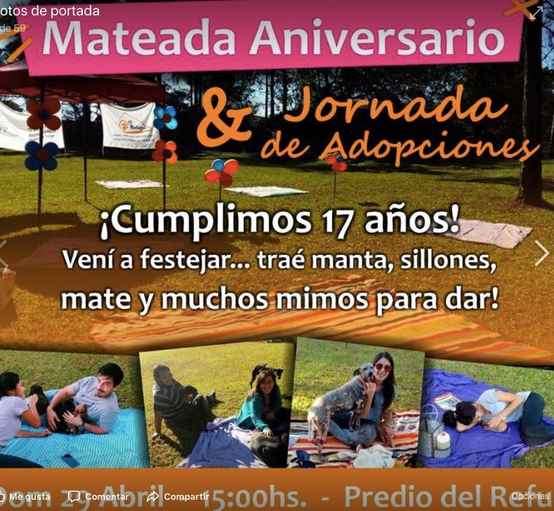 Mateada aniversario y jornada de adopciones en el Refugio de Animales de Posadas