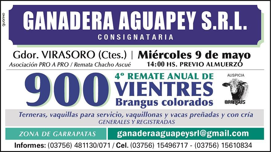 Ganadera Aguapey desarrollará una completa agenda de remates durante mayo