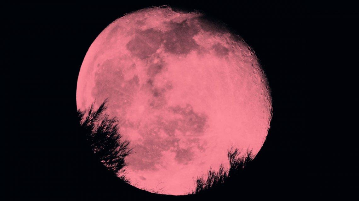 Esta noche se verá un fenómeno astronómico que hace 50 años no ocurre: la luna rosa