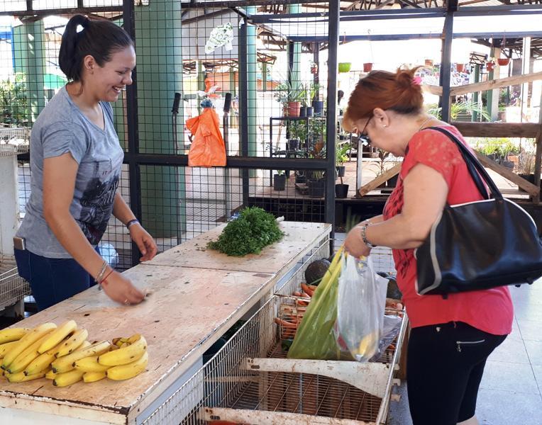 Ofertas en el Mercado Concentrador Zonal de Posadas vigentes hasta este sábado