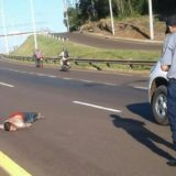 Caso Sotelo: El ministro de Gobierno de Misiones respaldó el accionar policial