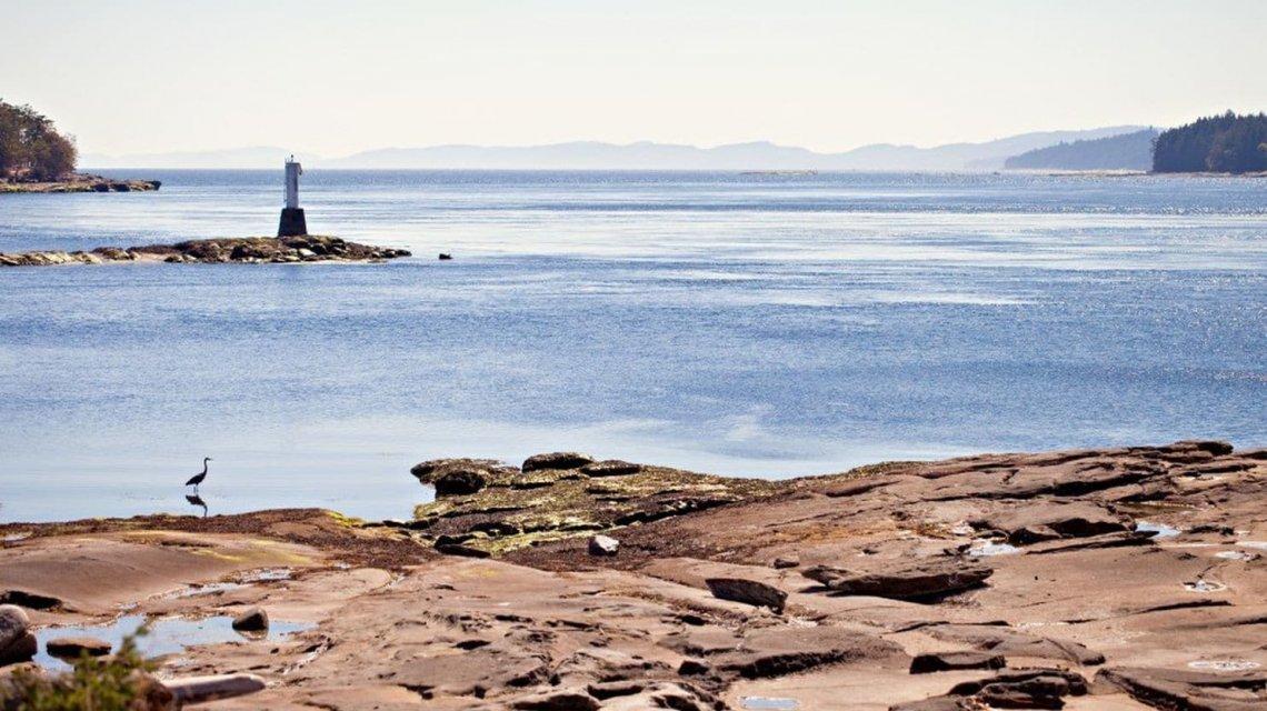 Misterio en una playa de Canadá: una serie de pies humanos aparecieron en la costa