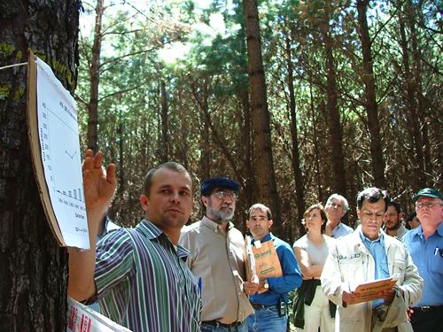 Los ingenieros forestales frente a una nueva redefinición de actividades según resolución del Consejo de Universidades