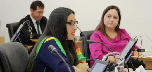 """Aprobaron proyecto para la creación de un """"Paseo de la Diversidad"""" en Posadas"""