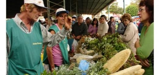 Productores de la feria franca de Itaembé Guazú se trasladaron a la Escuela Provincial N° 5