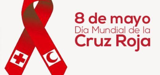 En el Día Internacional de la Cruz Roja te invitamos a conocer más sobre esta organización