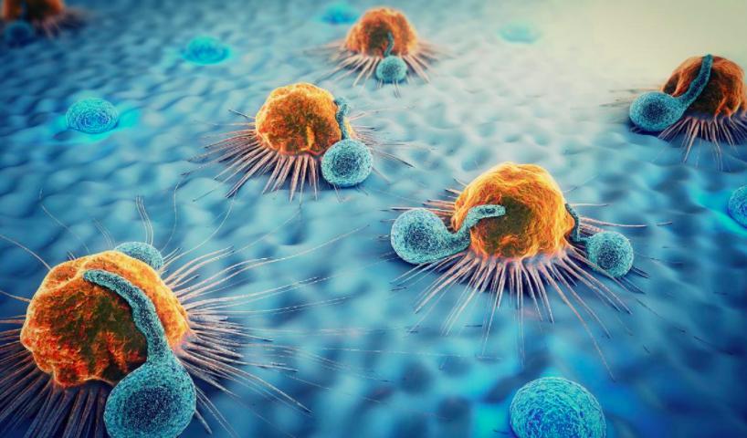 Cáncer: descubren el gen clave en la activación de la metástasis