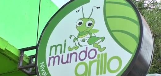 """""""Educar y aprender en libertad"""": la pedagogía Montessori una nueva alternativa en Posadas"""