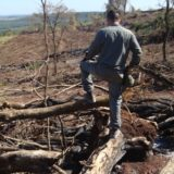 Policía y guardaparques frustraron continuidad de apeo ilegal en las 2000 hectáreas