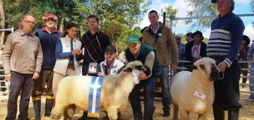 La mejor genética de la ganadería menor se lució en Fachinal