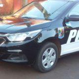 Posadas: los jefes de la comisaría 13ra le salvaron la vida a un nene de dos años, que fue llevado a la guardia convulsionando