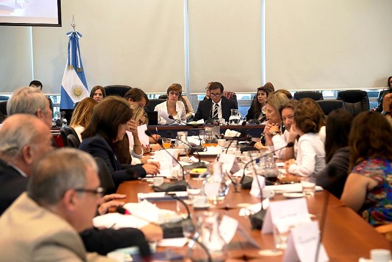 VIVO: séptimo encuentro del plenario de comisiones que analiza los proyectos para la legalización del aborto