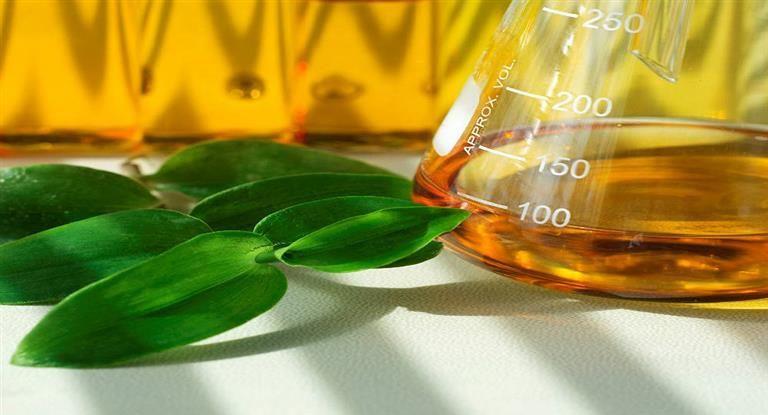 El Gobierno aumentó un 26% el biodiesel