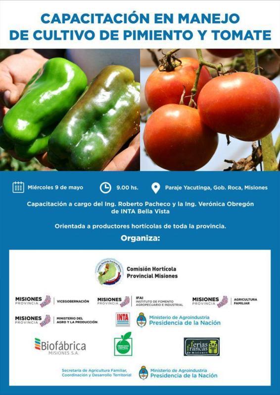 Capacitarán a productores en cultivo de tomate y pimientos