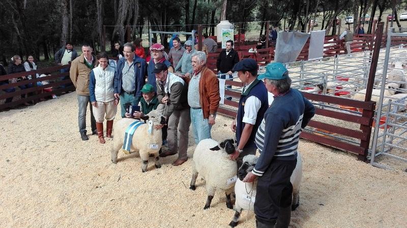 """Balance positivo para la """"Primera Expo de Animales Menores"""", en Fachinal"""